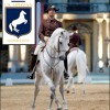 Driving Radio Show Episode 98 – Driving Lipizzans, Emergency Prep for Horses and Keady Update
