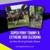 #312 by Purina Mills – Katie Whaley's Super Pony Tommy and Extreme Dog Sledding