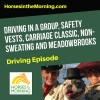 Driving in a Group, Safety Vests, Carriage Classic, Non-Sweating and Meadowbrooks 101