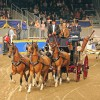 Driving Radio Show Episode 18 – The Royal Winter Fair