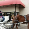 Driving Radio Show Episode 139 – Bayfront Carriages