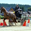 Driving Radio Show Episode 162 – WEG 2014 and World Singles Preview