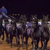 Driving Radio Show Episode 167 – Live from Mackinac, Percheron Thunder and World Singles Championships