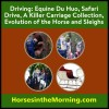 Sleighs 101, a Champion Named Scooter, Evolution of the Horse and the Carriage Murders for Dec. 6, 2018