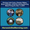 Irish Jaunting Car, Chester Weber, Bram Chardon, Arthritis and Auctioning Black Prong for Mar. 7, 2019