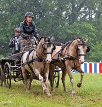 Presidential Carriages, Chelsie Sievers Pony Pair, Driving Posture and Anhidrosis for July 22, 2019