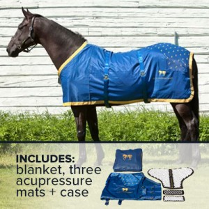 accuhorsemat-large-product